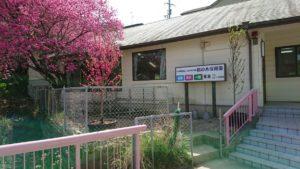 桃の木保育園